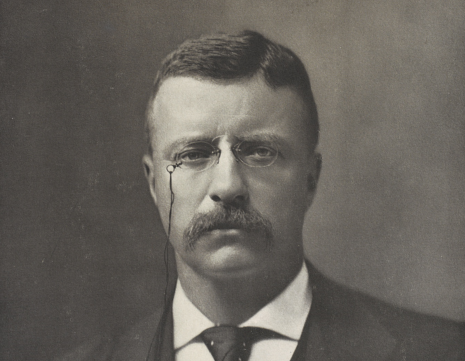 Rough Rider to Bull Moose: Letters to Theodore Roosevelt image