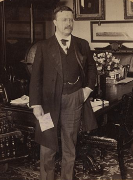 3. Sept. 16, 1901-Dec. 1902: First Year as President