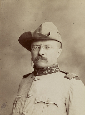 1. Aug. 1759-Mar. 6, 1901: Rough Rider to Vice President